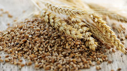 Nutritious and Satisfying Whole Grains